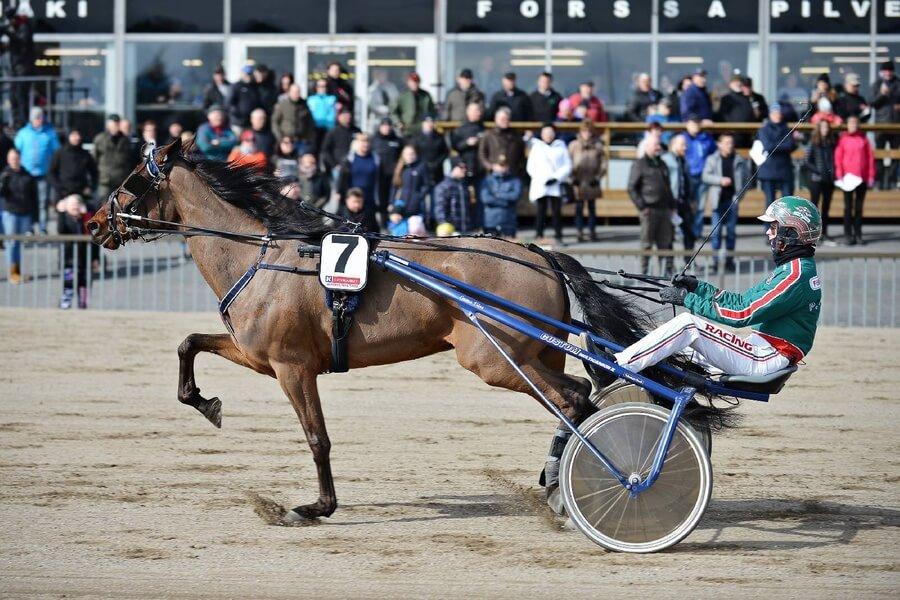 Pesiskimppaan pääsee yhä mukaan – Hevosurheilun Kuukauden henkilö on Juha Puhtimäki!