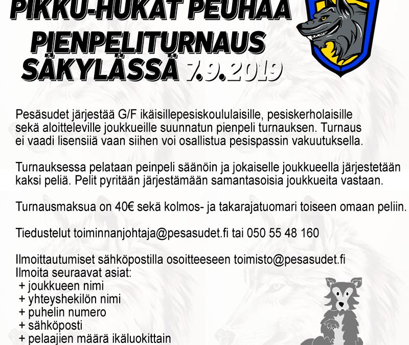 Säkylässä järjestetään pienpeliturnaus 7.9.