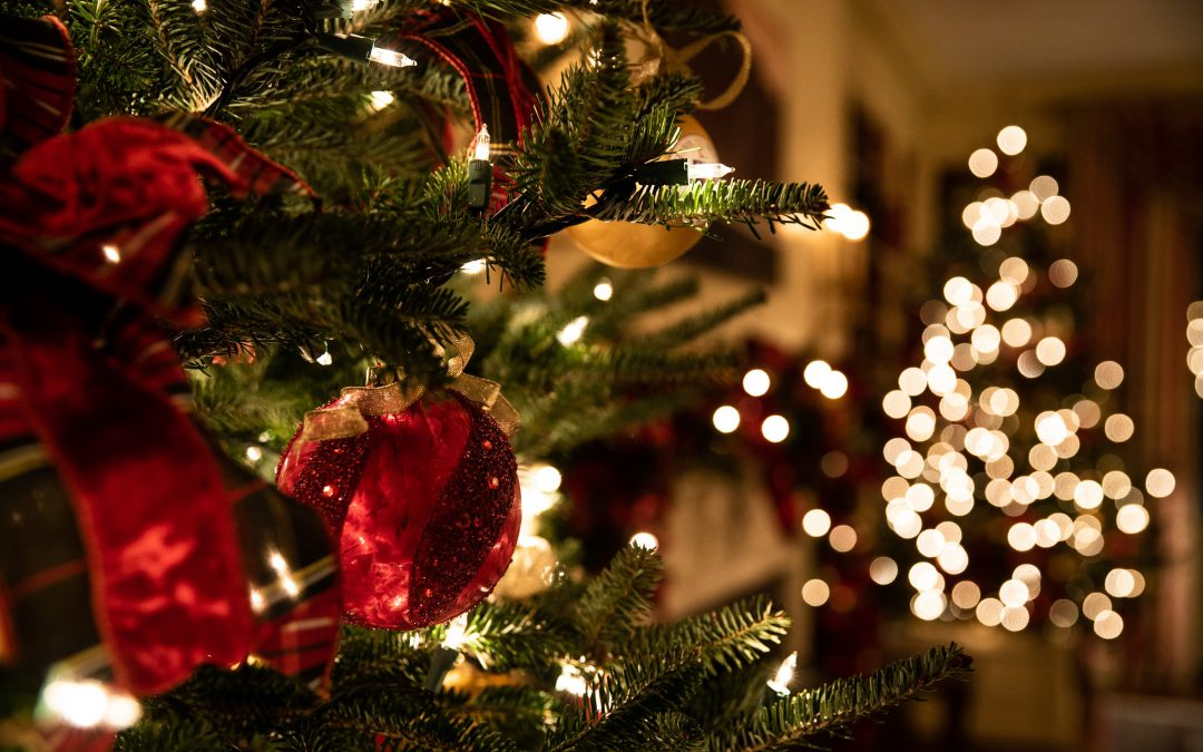 Joulukuun seurakirje –  Hyvää ja rentouttavaa joulun aikaa sekä onnea vuodelle 2020!