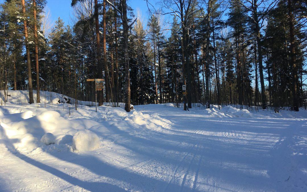 Tahko Pihkala vei hiihtoloman käytäntöön – nyt talvilomalle kelpaa entinenkin nimitys, vaikka muutenkin voi liikkua
