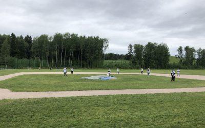 Odotetut baseballin ja softballin päiväleirit järjestetään Helsingissä ja Espoossa – ilmoittautuminen avattu!